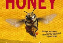 More Than Honey is one of ReFrame Film Festival's 2014 feature films. Showcasing the demise of the worldwide bee population, it explores the world of bees and what is being done to slow this impending epidemic.