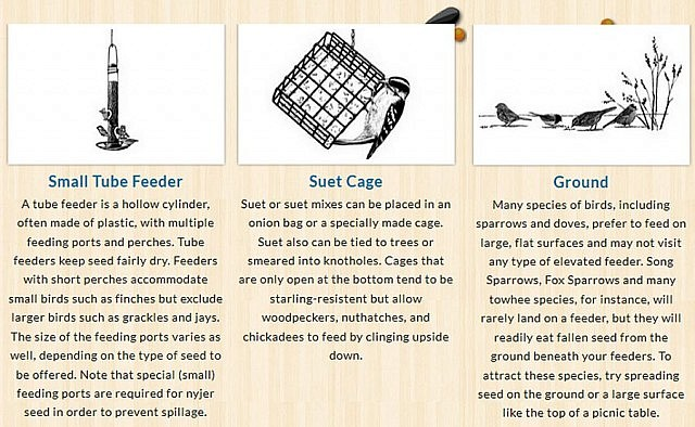"Bird feeders are not ""one size fits all"". Different species are attracted to different designs. Find out more about feeder types by visiting www.feederwatch.org. (Graphic: Cornell University)"