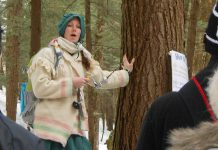 You can enjoy a guided tour of the Maple Valley sap-collecting route during Maple Syrup Day at the Ganaraska Forest Centre (photo courtesy of GRCA)