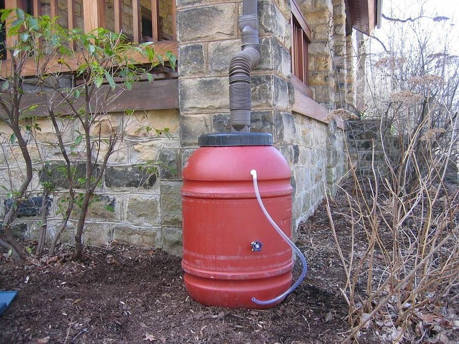 Many People Are Choosing To Install Rain Barrels As An Effective Way Gather And