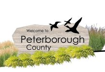 The architect's design concept for the new County of Peterborough gateway sign to be installed on Highway 115 by this fall