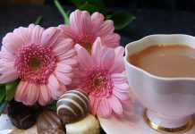 """For the Love of Mom: Chocolate Tea"", a fundraiser for Kawartha Sexual Assault Centre, takes place on Saturday, May 9th at McDonnel Street Activity Centre in Peterborough"