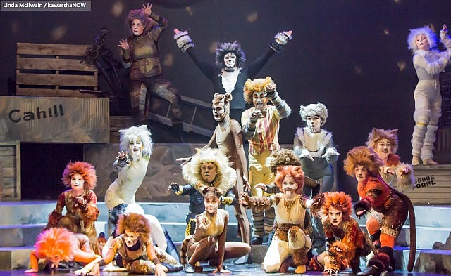 "The Peterborough Theatre Guild production of the famous Andrew Lloyd Webber musical ""Cats"" ran at Showplace Performance Centre in Peterborough in May for seven performances only (photo: Linda McIlwain / kawarthaNOW)"