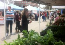 Last year's opening day of the Peterborough Downtown Farmers' Market