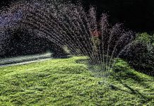 With dry conditions sure to arrive in the weeks ahead, now is the time to think about effective watering techniques for lawns and gardens. Most lawns only require about an inch of water each week. (Photo: Robert Couse-Baker)