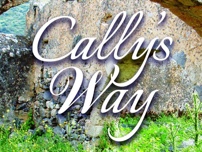 """Cally's Way"" by Jane Bow"