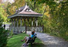 The Pagoda Bridge in Jackson Park in Peterborough will be restored over September and October (photo: Ron Crough)