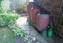 GreenUP is looking for Peterborough residents who are using water wisely, like Warren Dunlop who has this great rain barrel setup in his backyard (photo: Warren Dunlop)