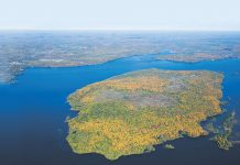 Located in Pigeon Lake just east of Bobcaygeon, Boyd Island is one of the largest and most significant undeveloped islands in Ontario
