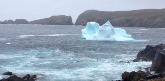If you've never seen an iceberg in person, then you haven't quite lived. This iceberg in Newfoundland's Grates Cove was the size of a small home, but the part you see is only a fraction of the whole thing.