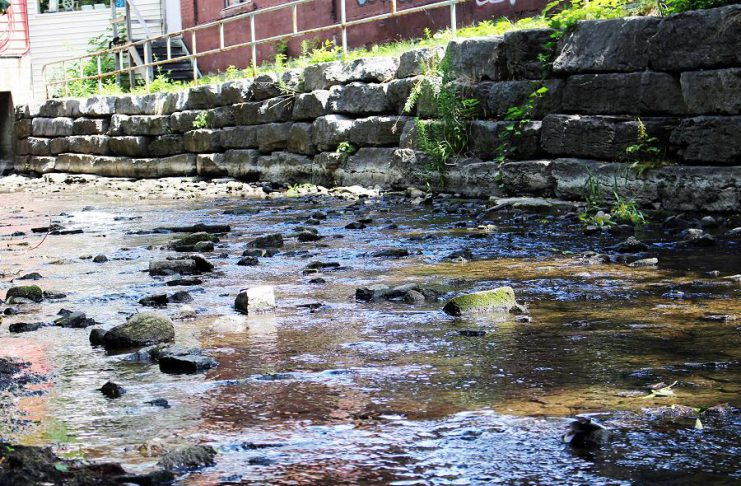 Low water levels in Jackson Creek in downtown Peterborough in 2016. (Photo: Karen Halley / GreenUP)