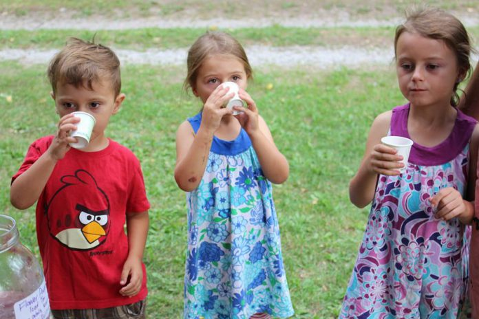 Children enjoy their homemade flavoured water at GreenUP Ecology Park Family Night; kids really enjoy the fruity flavours of Rosehips and Hibiscus flowers and will also benefit from the health benefits of vitamin C that come along with it.
