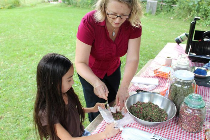 Marianne Beacon from Elderberry Herbals helps an attendee of GreenUP Ecology Park Family Night assemble a bag from dried Hibiscus, Rose hips, and Red Clover tied in cheesecloth in order to make naturally flavoured water. Healthy Kids Community Challenge Peterborough has provided funding to help families and kids to make healthier, unsweetened choices when selecting beverages to hydrate.