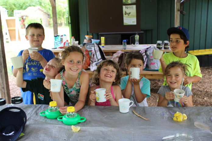 A group of summer campers at GreenUP Ecology Park raise their cups as they enjoy flavoured water they made with sumac berries, lemon, and the added sweetness of honey from the GreenUP Ecology Park bees. Naturally flavoured water is a healthy alternative to sodas and juices containing high levels of sugar and fructose.
