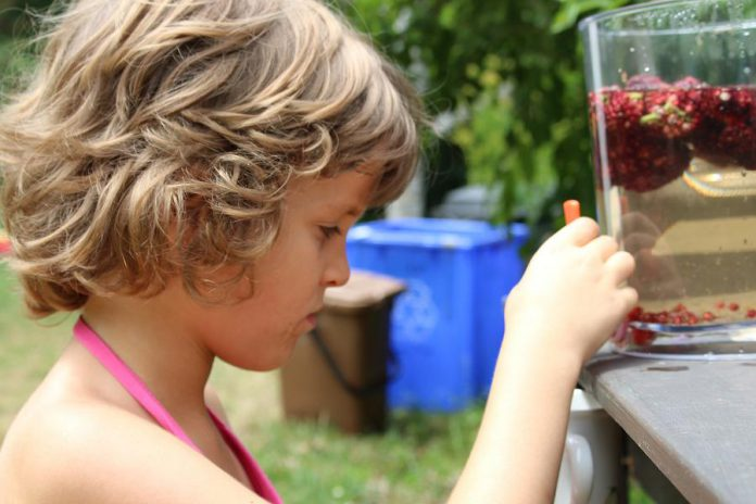 A young camper at GreenUP Ecology Park enjoys homemade sumac-flavoured water which is naturally sweet and high in vitamin C.