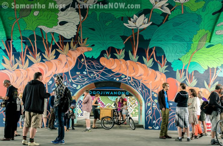 """A public launch on September 1, 2016, was held to celebrate the completion of Edmonton artist Jill Stanton's """"Bloodroot"""" mural in an archway under the Hunter St. Bridge. It's adjacent to the """"Electric City Mural"""" (pictured in background) completed last year by Toronto artist Kirsten McCrea (photo: Samantha Moss / kawarthaNOW)"""