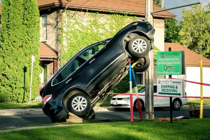 car climbs hydro pole in peterborough s east city news. Black Bedroom Furniture Sets. Home Design Ideas
