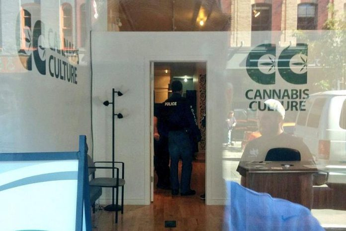 Members of Peterborough Police Drug Unit execute a search warrant on September 15 at Cannabis Culture at 382 George Street in downtown Peterborough. Police arrested owner Richard Standen and employee Maranda Gallant. (Photo: Facebook video)