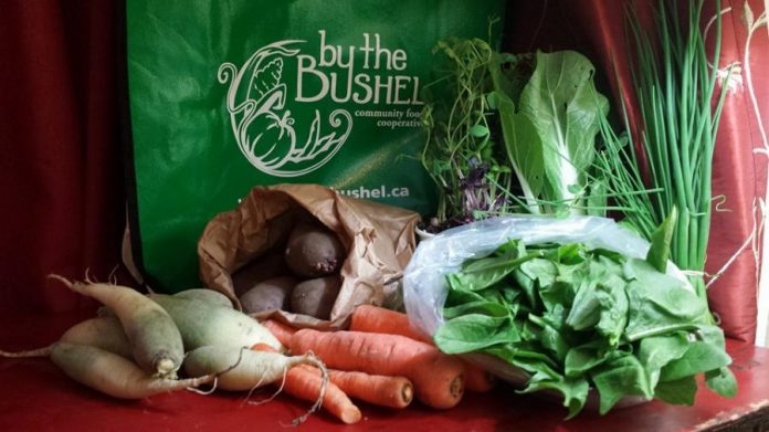 By the Bushel is encouraging people to register early for their winter basket program. (Photo: By the Bushel)