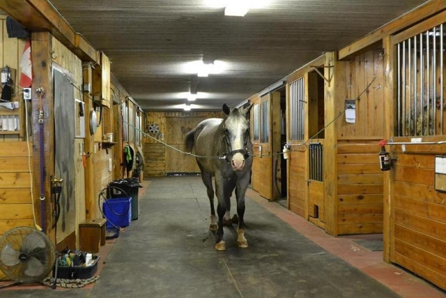 15 stable comfort stalls and a heated tack room make this a great place to keep horses. (Photo: Dan Parker)