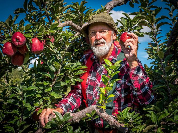 """Steve Smith brings his beloved Red Green character to the stage in """"I'm Not Old I'm Ripe"""" at Showplace Performance Centre in Peterborough on October 16 (publicity photo)"""