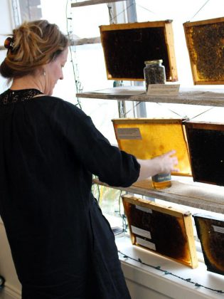 GreenUP's resident beekeeper Marcy Adzich displays frames from the collapsed hive from GreenUP Ecology Park. The public is invited to visit the display at the GreenUP Store to view first hand the impacts of colony collapse, and to learn about honeybee ecology and behaviour and the importance of pollinators in Peterborough.  (Photo: Karen Halley, GreenUP)