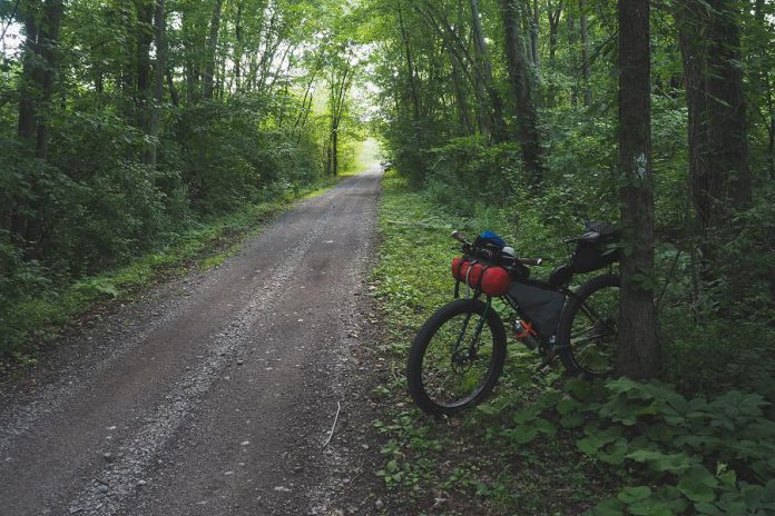 The Victoria Rail Trail is an 85-kilometre trail with corridors linking Kinmount to Bethany through Lindsay. (Photo: Miles Arbour)