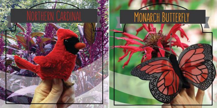 Two of the animal puppets available with a donation to GreenUP's NEST fund, which supports improvements at GreenUP's Ecology Park (graphic: Peterborough GreenUP)