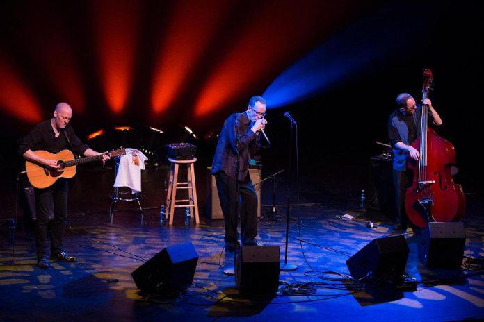 Carlos del Junco and the Blues Mongrels Quartet in concert (photo: Carlos del Junco / Facebook)