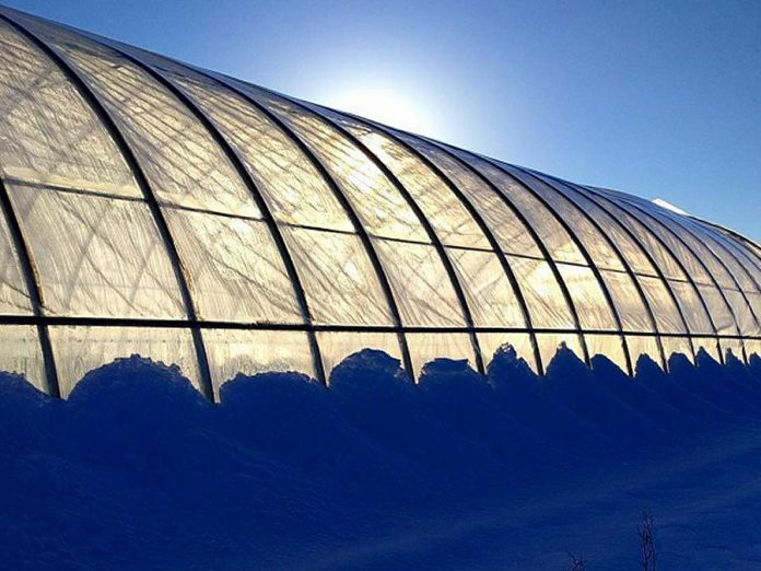 Tiny Farm's greenhouse allows them to grow greens well beyond the regular growing season (photo: Tiny Farm)