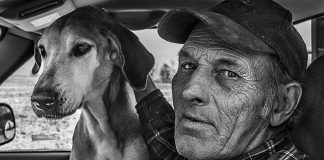"""There are more than 50 exhibits in this year's SPARK Photo Festival taking place during April in the Kawarthas. Pictured is a photo from Gary Mulcahery's exhibit """"Farmer: Portraits of Family Farms in Northumberland County"""" which will be on display at the Arts and Heritage Centre of Warkworth (photo courtesy of SPARK Photo Festival)"""