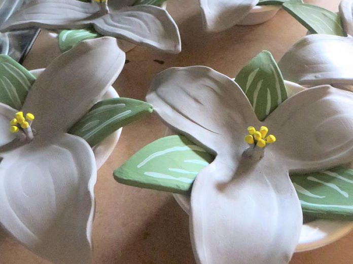 Ceramic trilliums drying at the Kawartha Potters Guild. Created by volunteers, 600 of the finished trillims will be placed at Peterborough Cenotaph for a ceremony on April 9, the 100th anniversary of the Battle of Vimy Ridge. Some trilliums are still available for sponsorship or purchase from the City of Peterborough, with proceeds going to support restoration of the War Memorial and to enhance treatment services for veterans and their families. (Photo: Kawartha Potters Guild)