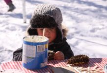 A child coats a pine cone with lard at the bird-feeding station at Ecology Park, which has engaged more than 10,000 children in educational programs over the past 25 years. Peterborough GreenUP has embarked on an ambitious five-year plan to fund raise $440,000 to improve the park and expand programming. (Photo: Jeannine Taylor / kawarthaNOW)