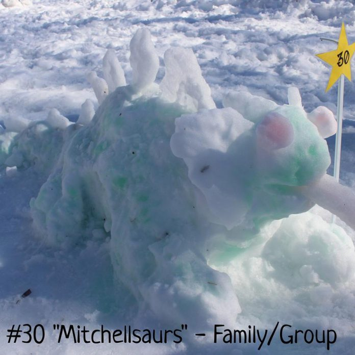 """Michelle Mitchell and family won in the Family/Group category for """"Mitchellsaurus""""."""