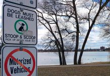 "A ""stoop and scoop"" sign at Roger's Cove in Peterborough's East City with Little Lake in the background. The most environmentally friendly thing you can do with your dog's poop is to take it home and flush it down the toilet. If that's too much work for you, at least ensure you pick it up and dispose of it in the garbage. Don't leave it lying around where rainwater will eventually carry it into our waterways, creating problems for plant life, wildlife, humans, and pets. (Photo: Bruce Head / kawarthaNOW)"