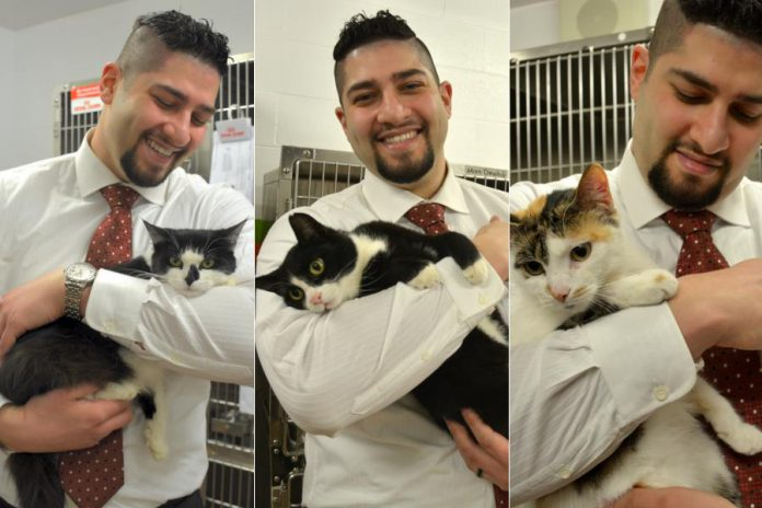 An animal lover who has adopted several cats from the Peterborough Humane Society, Waleed is helping the charitable organization facilitate donations and save money by donating a free ecommerce website. Here he's pictured with Molly (2 years old), Puss (3), and Beth, whose age is unknown. All three cats are available for adoption from the Peterborough Humane Society. (Photo: Eva Fisher)