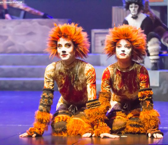 A retrospective of the work of Howard Berry, the man behind the costume designs featured in many of the Peterborough Theatre Guild's most successful shows like Cats, is taking place at The Mount Community Centre along with a series of special events from May 26 to May 28, with proceeds going to support The Mount. (Photo: Linda McIlwain / kawarthaNOW)