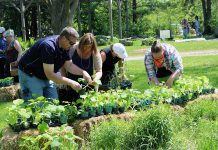 GreenUP Staff and volunteers will be on hand to help you make veggie, annual and perennial, shrub and tree choices for your garden at the Annual Ecology Park Plant Sale this Sunday, May 21st noon to 4 p.m. (Photo: Karen Halley)