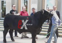 The Peterborough Agricultural Society has put together a sponsorship package for businesses for this year's Peterborough Ex.