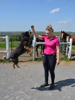 Erica is a skilled animal trainer, training the Sky Haven horses and dog Khaleesi. (Photo: Eva Fisher / kawarthaNOW)