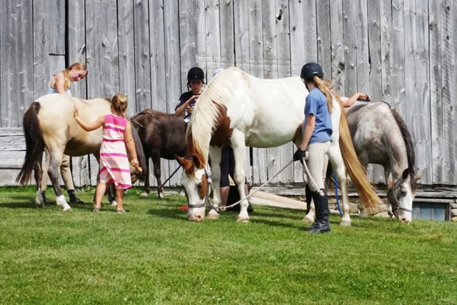 At the camp, kids spend time in the saddle, learn how to groom, feed and safely handle horses, clean the stalls, and get ready for  daily lessons. (Photo: Heather Leach / Seven Pines Stables)