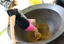 An attendee of the Peterborough Children's Water Festival participates in The Wild Rice Dance-off activity centre where children take turns wearing moccasins and dancing in a large cauldron of wild rice, a traditional practice used to remove the chaff from the grain of rice. (Photo: Karen Halley)