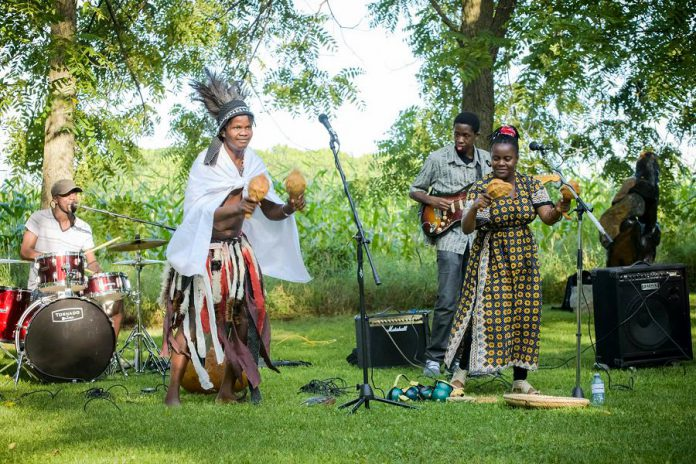 ZimArt's 18th annual exhibition runs from August 5 to September 3, with the opening and closing parties featuring live Zimbabwean music by Nhapatipi. (Photo: ZimArt's Rice Lake Gallery)