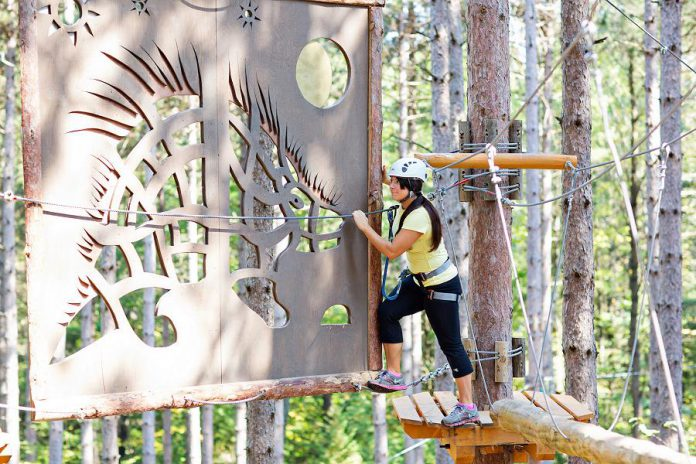 The park has a huge variety of courses ranging from beginner to advanced so there is fun to be had for just about everyone. Even the extreme courses will test the most athletic climbers.  (Photo: Treetop Trekking Ganaraska)