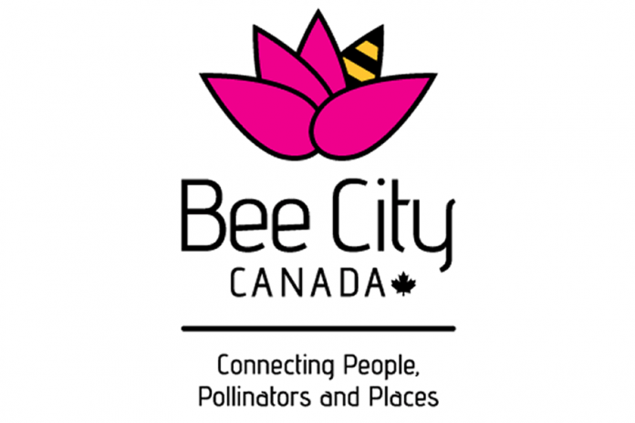 Bee City Canada awards the designation to municipalities that made a declaration to protect pollinators and their habitat through action and education. (Graphic: Bee City Canada)