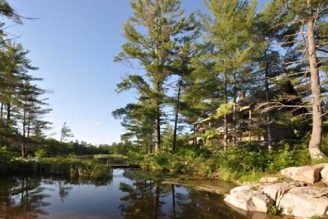 Looking to buy or sell near the shoreline? Lynn's education in aquatic ecology will give you a better understanding. (Photo: Jim Riches Venture Homes)
