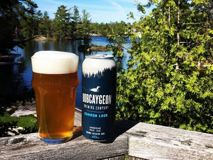 Bobcaygeon Brewing Company is one of four cottage country breweries to try this summer. Pictured is the Common Loon American Pale Ale, one of their flagship brews. (Photo: Bobcaygeon Brewing Company)