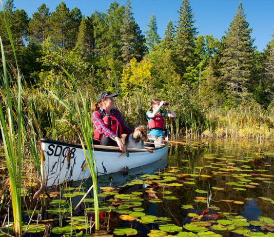 On Friday, July 21, you can spend a day at one of Ontario's 330 provincial parks for free (photo: Ontario Parks)