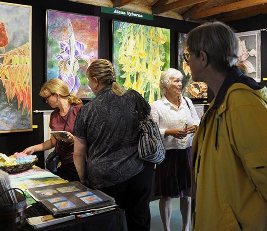 The Buckhorn Fine Art Festival takes place at the Buckhorn Community Centre from Friday, August 18th to Sunday, August 20th. (Photo: Buckhorn Fine Art Festival)
