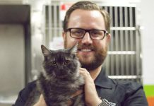 Andrew Fraser, Executive Director of the Peterborough Humane Society, with one of the many cats available for adoption from the society. Until August 31st, all cats and kittens are available for adoption for $50 each. (Photo: Peterborough Humane Society)